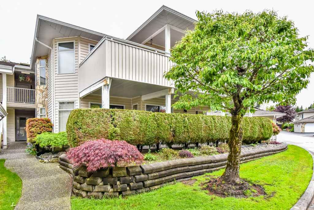 """Main Photo: 105 10584 153RD Street in Surrey: Guildford Townhouse for sale in """"Glenwood Village"""" (North Surrey)  : MLS®# R2266261"""