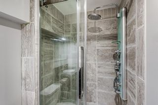 Photo 45: 303 Chapalina Terrace SE in Calgary: Chaparral Detached for sale : MLS®# A1113297