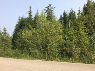 Photo 11: Lot 22 Ridge Road: Eagle Bay Land Only for sale (Shuswap)  : MLS®# 10167444