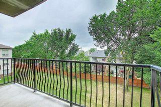 Photo 13: 321 6315 135 Avenue in Edmonton: Zone 02 Condo for sale : MLS®# E4255490