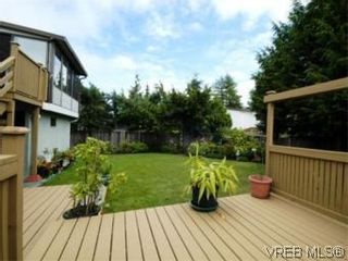 Photo 19: 4397 Columbia Dr in VICTORIA: SE Gordon Head House for sale (Saanich East)  : MLS®# 513130