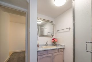 Photo 6: 5558 Kenwill Drive Lower in Nanaimo: Residential for rent