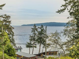 Photo 61: 3339 Stephenson Point Rd in : Na Departure Bay House for sale (Nanaimo)  : MLS®# 874392