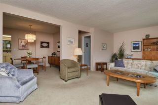 """Photo 4: 104 3180 E 58TH Avenue in Vancouver: Champlain Heights Townhouse for sale in """"HIGHGATE"""" (Vancouver East)  : MLS®# R2405144"""