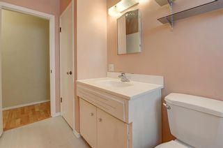 Photo 16: 3128 45 Street SW in Calgary: Glenbrook Detached for sale : MLS®# A1063846