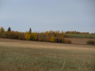 Photo 1: RR 270 North of Hwy 37: Rural Sturgeon County Rural Land/Vacant Lot for sale : MLS®# E4265129