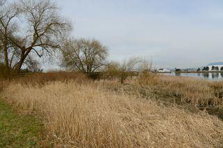 Photo 37: 102 5500 LYNAS LANE in The Hamptons: Riverdale RI Condo for sale ()  : MLS®# R2249699