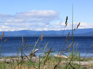 Photo 4: 954 SURFSIDE DRIVE in QUALICUM BEACH: PQ Qualicum Beach House for sale (Parksville/Qualicum)  : MLS®# 783341