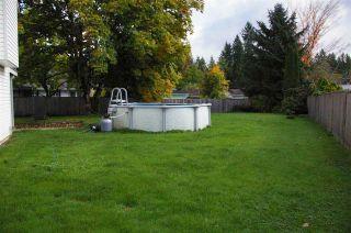 Photo 15: 24820 118B Avenue in Maple Ridge: Websters Corners House for sale : MLS®# R2008324