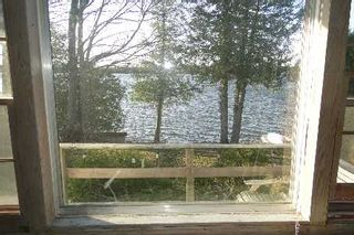 Photo 8: 41 North Taylor Road in Kawartha Lakes: Kirkfield House (Bungalow) for sale : MLS®# X2580553