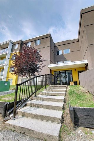 Photo 2: 303 4455A Greenview Drive NE in Calgary: Greenview Apartment for sale : MLS®# A1108022