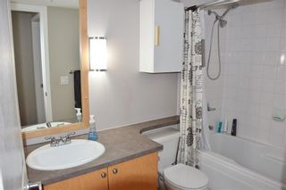 Photo 11: 338 30 Richard Court SW in Calgary: Lincoln Park Apartment for sale : MLS®# A1065647