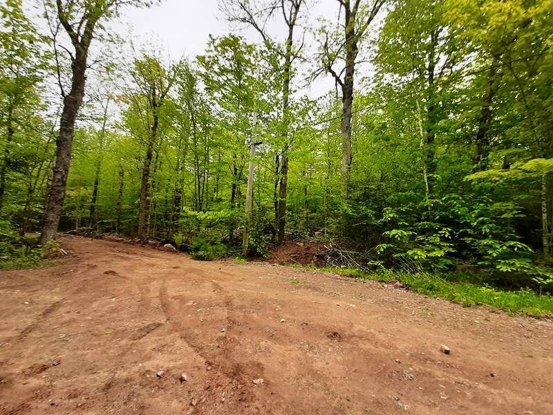 Main Photo: Lot N4 Nature Haven Road in Lake Paul: 404-Kings County Vacant Land for sale (Annapolis Valley)  : MLS®# 202009526