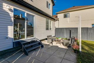 Photo 33: 11 Bridlewood Gardens SW in Calgary: Bridlewood Detached for sale : MLS®# A1149617