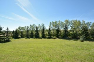 Photo 29: 33169 BIG HILL SPRINGS Road in Rural Rocky View County: Rural Rocky View MD House for sale : MLS®# C4110973