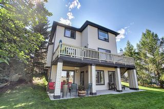 Photo 46: 188 SPRINGMERE Way: Chestermere Detached for sale : MLS®# A1136892