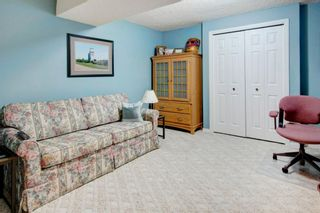 Photo 24: 227 Canals Boulevard SW: Airdrie Detached for sale : MLS®# A1091783