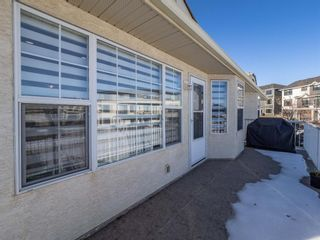 Photo 28: 260 Harvest Grove Place NE in Calgary: Harvest Hills Residential for sale : MLS®# A1062978