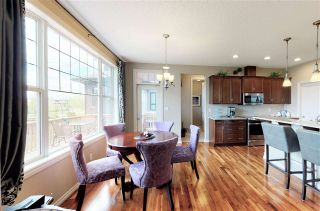 Photo 22: 4018 MACTAGGART Drive in Edmonton: Zone 14 House for sale : MLS®# E4229164