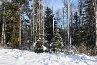 "Photo 13: 1 3000 DAHLIE Road in Smithers: Smithers - Rural Land for sale in ""Mountain Gateway Estates"" (Smithers And Area (Zone 54))  : MLS®# R2280132"