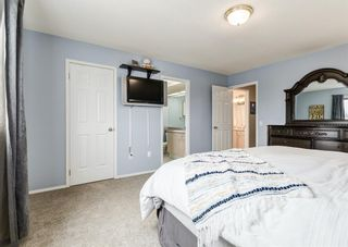 Photo 28: 95 Tipping Close SE: Airdrie Detached for sale : MLS®# A1099233