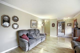 Photo 4: 5915 18 Avenue NE in Calgary: Pineridge Detached for sale : MLS®# A1032998