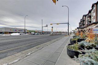 Photo 44: 1728 54 Street SE in Calgary: Penbrooke Meadows Detached for sale : MLS®# C4220376