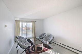Photo 9: 104 5555 Falsbridge Drive NE in Calgary: Falconridge Apartment for sale : MLS®# A1094535