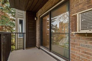 Photo 16: 204 333 2 Avenue NE in Calgary: Crescent Heights Apartment for sale : MLS®# A1039174