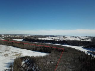 Photo 9: 50317 Rge Road 10: Rural Parkland County Rural Land/Vacant Lot for sale : MLS®# E4229985