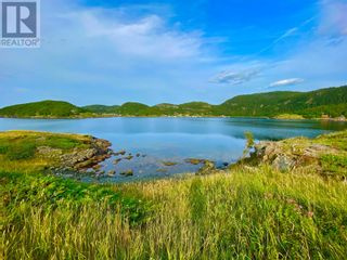 Photo 8: 0 Main Street in Moretons Harbour: Vacant Land for sale : MLS®# 1235758