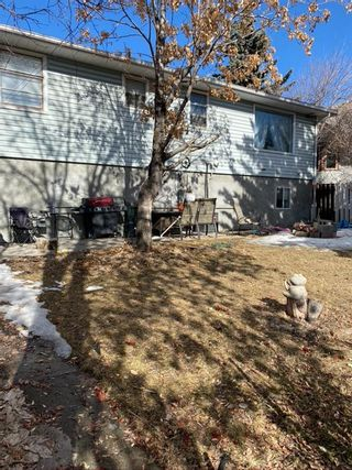 Photo 31: 2707 9 Avenue SE in Calgary: Albert Park/Radisson Heights Detached for sale : MLS®# A1078333