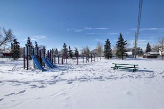Photo 34: 1214 1317 27 Street SE in Calgary: Albert Park/Radisson Heights Apartment for sale : MLS®# A1070398