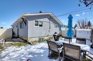 Photo 38: 1027 Penrith Crescent SE in Calgary: Penbrooke Meadows Detached for sale : MLS®# A1104837