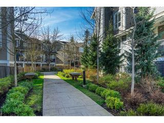 "Photo 36: 59 7059 210 Street in Langley: Willoughby Heights Townhouse for sale in ""ALDER at Milner Heights"" : MLS®# R2547907"