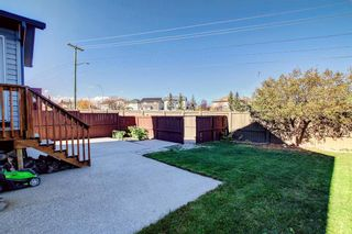Photo 23: 135 Country Hills Heights in Calgary: Country Hills Detached for sale : MLS®# A1153171