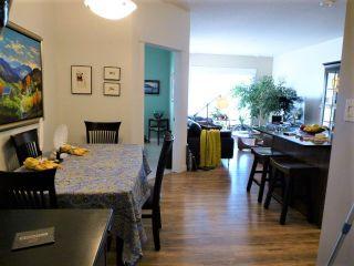 Photo 4: 503 10518 113 Street in Edmonton: Zone 08 Condo for sale : MLS®# E4247141