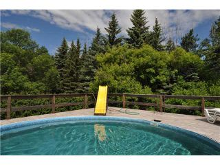 Photo 13: 243017 Range Road 240: Rural Wheatland County Residential Detached Single Family for sale : MLS®# C3624413