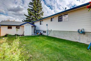Photo 27: 114 Pinetree Bay NE in Calgary: Pineridge Detached for sale : MLS®# A1151101