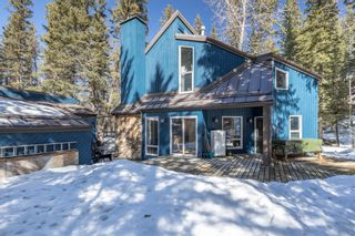 Photo 43: 35 Burntall Drive: Bragg Creek Detached for sale : MLS®# A1090777