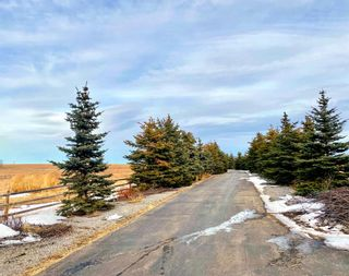 Photo 2: 270075 Horse Creek Road in Rural Rocky View County: Rural Rocky View MD Detached for sale : MLS®# A1074797