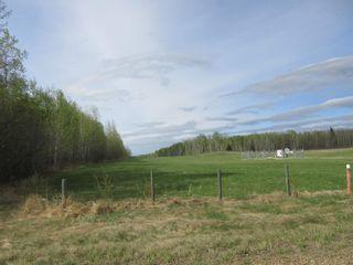 Photo 42: 63202 RR 194: Rural Thorhild County House for sale : MLS®# E4246203