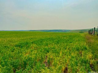 Photo 27: Unvoas Farm in Swift Current: Farm for sale (Swift Current Rm No. 137)  : MLS®# SK864766