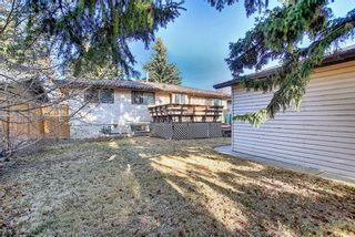 Photo 24: 12039 Candiac Road SW in Calgary: Canyon Meadows Detached for sale : MLS®# A1096218
