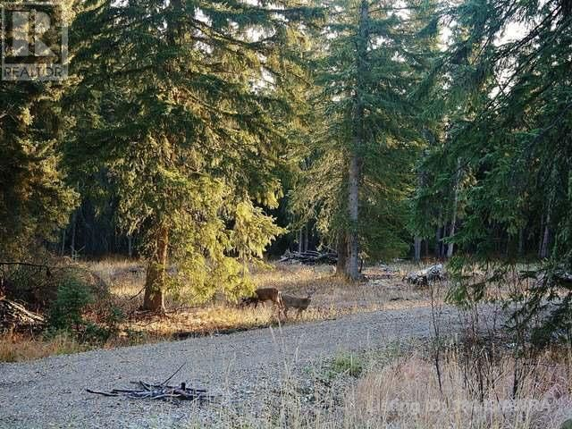Main Photo: 53018 RANGE RD 175 in Rural Yellowhead County: Vacant Land for sale : MLS®# AW38443