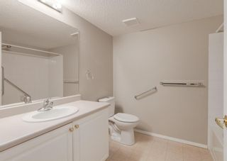 Photo 19: 3229 3229 MILLRISE Point SW in Calgary: Millrise Apartment for sale : MLS®# A1116138