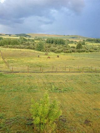 Photo 4: 322188 135 Street W: Rural Foothills County Detached for sale : MLS®# A1068193