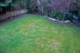 Photo 41: 3329 TURNER Avenue in Coquitlam: Hockaday House for sale : MLS®# R2054124