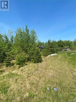 Photo 10: 74.62 Acres Route 127 in Bayside: Vacant Land for sale : MLS®# NB058351