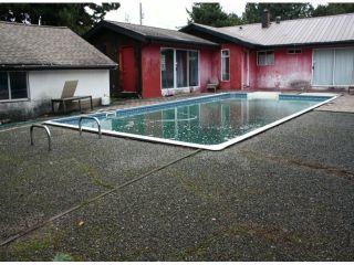 Photo 14: 10051 HELEN DR in Surrey: Cedar Hills House for sale (North Surrey)  : MLS®# F1401030